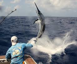 marlin big game fishing photo