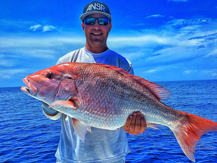 Federal Red Snapper Season in Gulf of Mexico